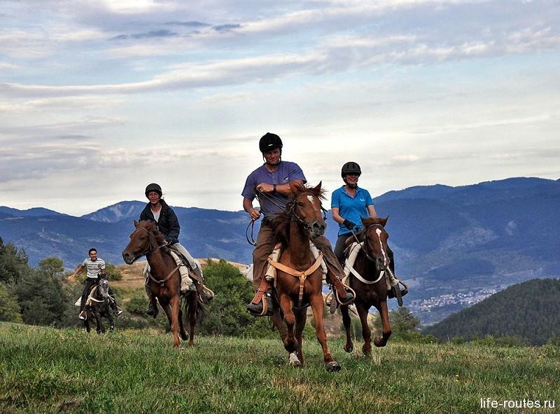 Очень популярны в Греции конные туры