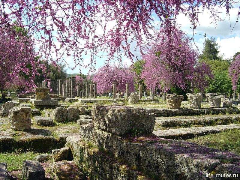 Олимпия весной