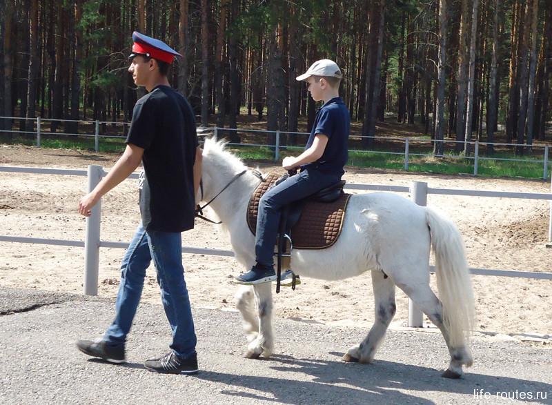 Желающие могут прокатиться на лошадке