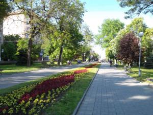 Проспект Ленина Волгоград