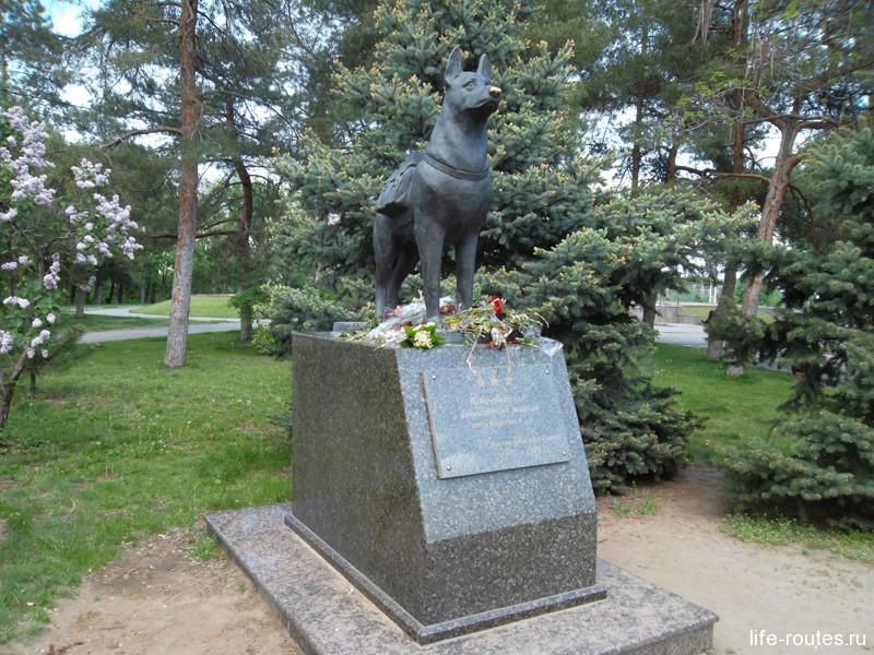 Памятник собакам-подрывникам на площади Чекистов