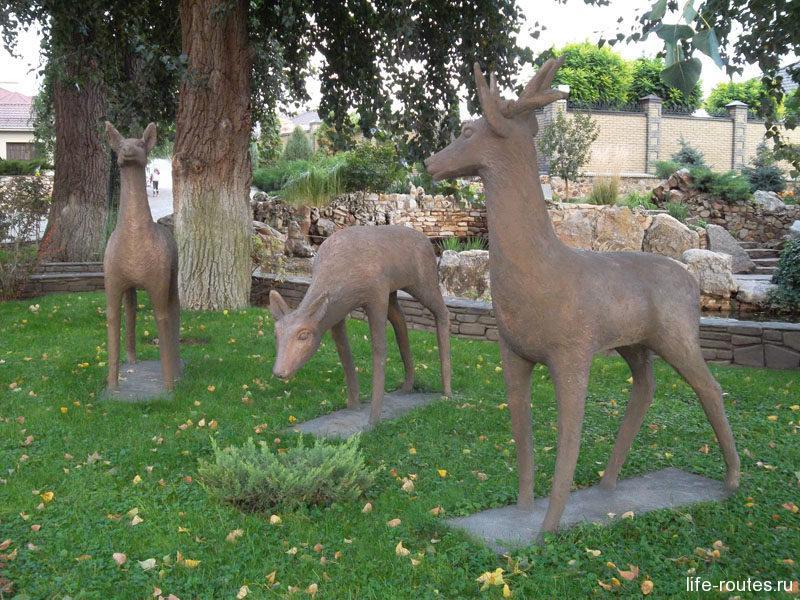 """""""Живут"""" здесь олени, лоси, кабаны, волки. Как будто только сейчас из леса прибежали"""