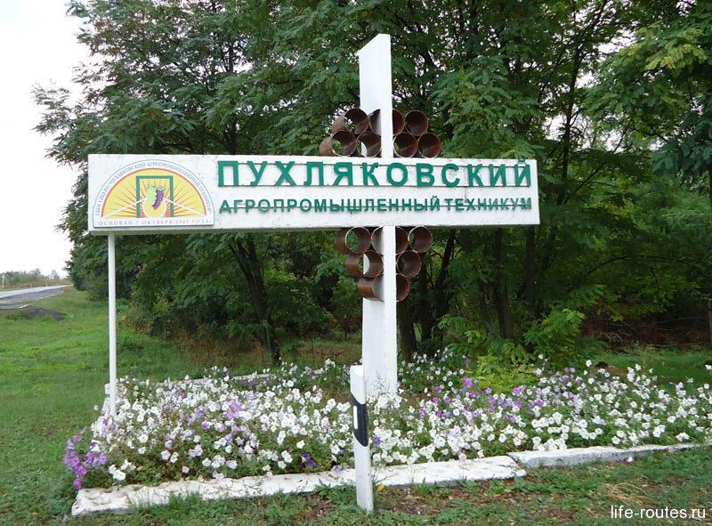 Школа виноградарства превратилась в Пухляковский агропромышленный техникум
