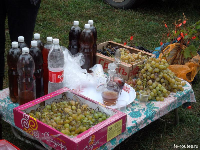 Донские вина местного производства разливают даже в обычные пластиковые бутылки