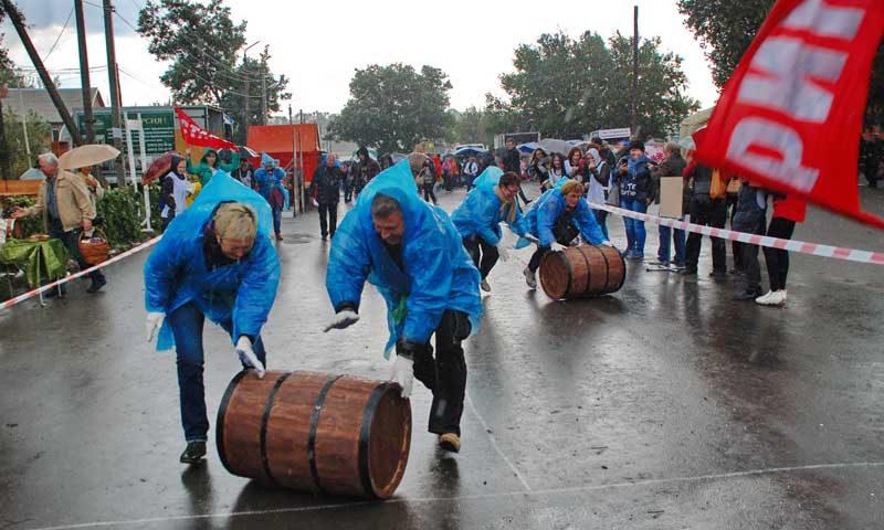 Заканчивается фестиваль соревнованиями по катанию винных бочек