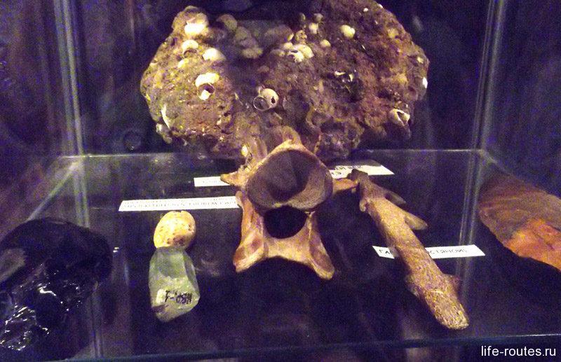 Самый редкий экспонат - деревянное копье эпохи каменного века. Таких найдено всего 3 в мире!