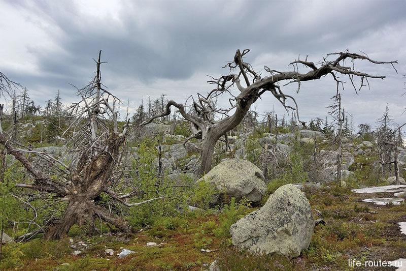 Гора Вотоваара - самое загадочное и мистическое место в Карелии