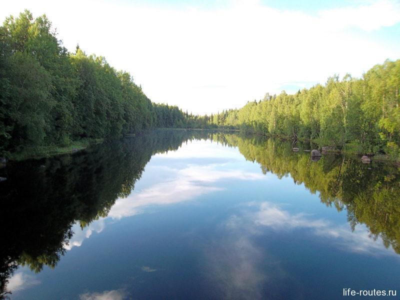 Интересные факты о природе Карелии