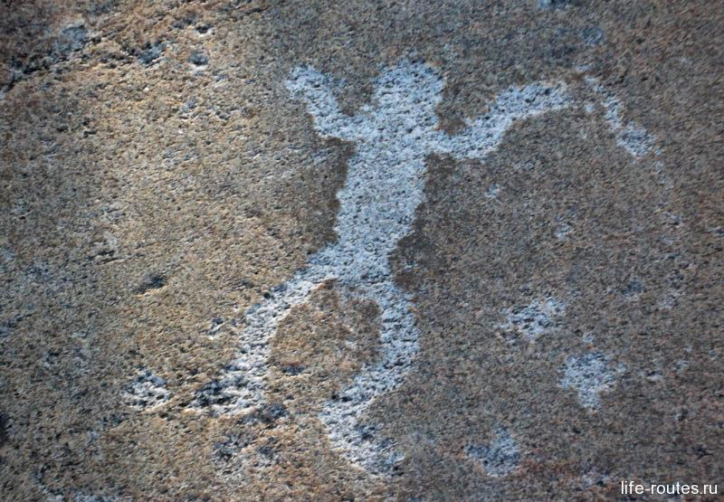 В Карелии обнаружено несколько тысяч петроглифов